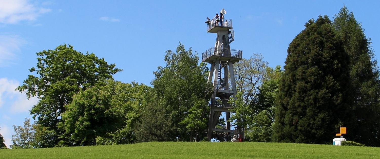 Hombergturm im Kanton Aargau